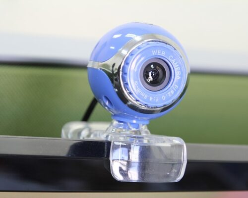 Image of web cam pointed at interviewee
